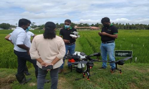 Rice Research Institute
